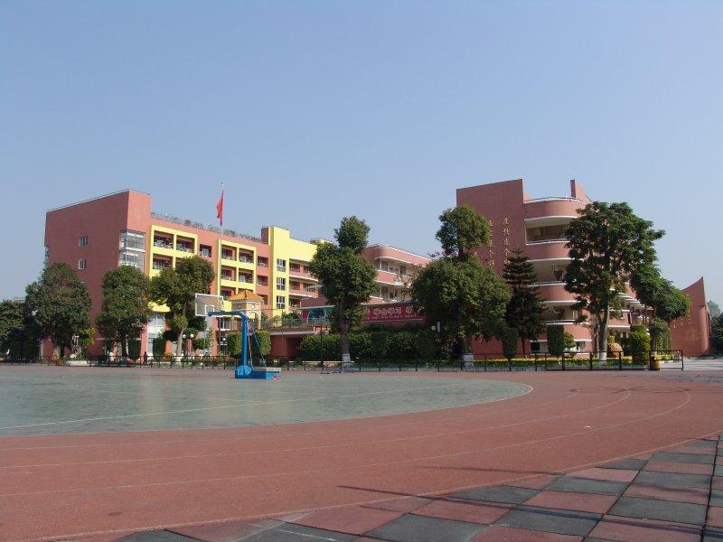 廣州市越秀區育才實驗學校圖片